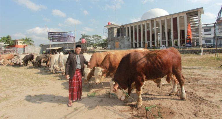 Tradisi Perayaan Idul Adha di 6 Daerah di Indonesia
