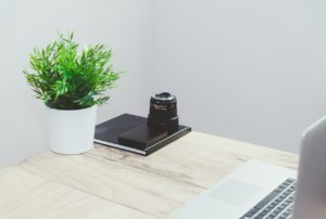 tanaman di meja kerja