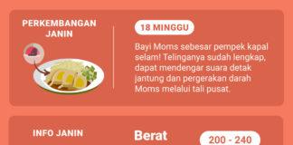 Shopee Moms Club hamil 18 minggu