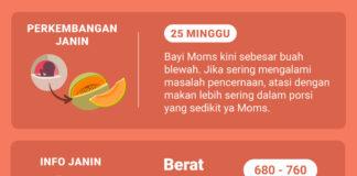 Shopee Moms Club Hamil 25 Minggu
