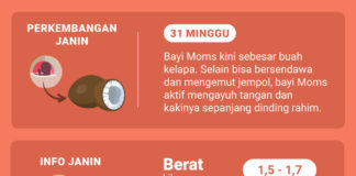 Shopee Moms Club Hamil 31 Minggu