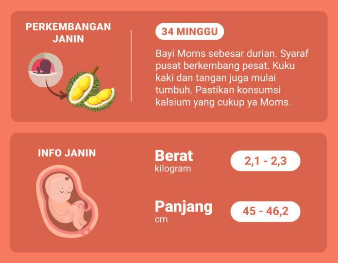 Hamil 34 Minggu