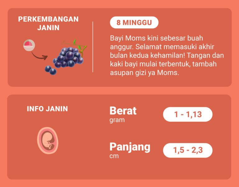 Sudah Memasuki Minggu Ke-8 Kehamilan, Bagaimana Perkembangan Janin Moms?