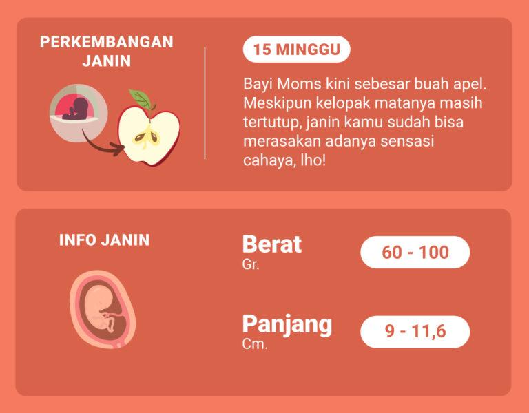 Di Usia Kehamilan 15 Minggu Ini, Bagaimana Perkembangan Janin Moms?