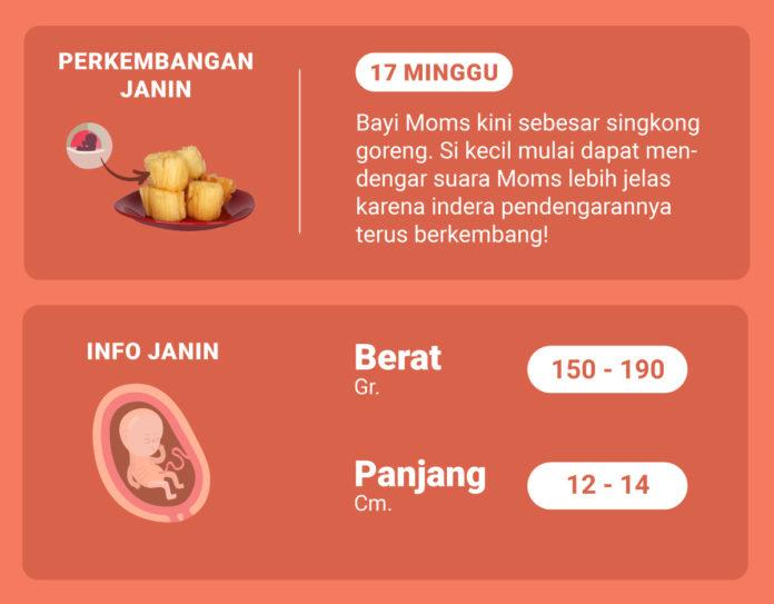 hamil 17 minggu perkembangan janin 17 minggu shopee moms club