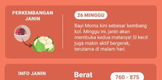 Perkembangan Janin 26 Minggu Info Kehamilan Hamil 26 Minggu