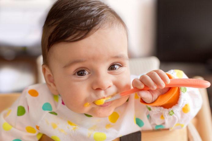 MPASI organik untuk si kecil