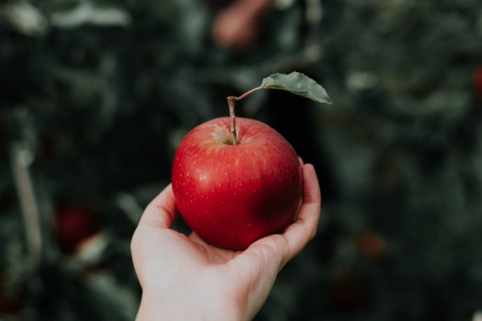 Sayur dan Buah yang Baik untuk Jantung