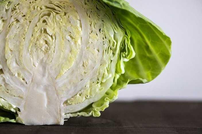 sayuran penurun darah tinggi